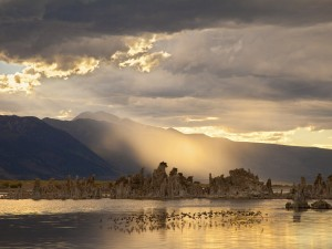 Mono Lake by Marie Read