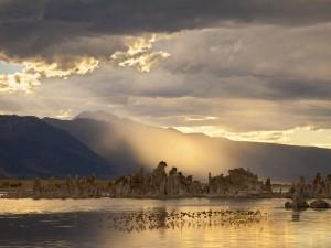 Mono Lake by Marie Read