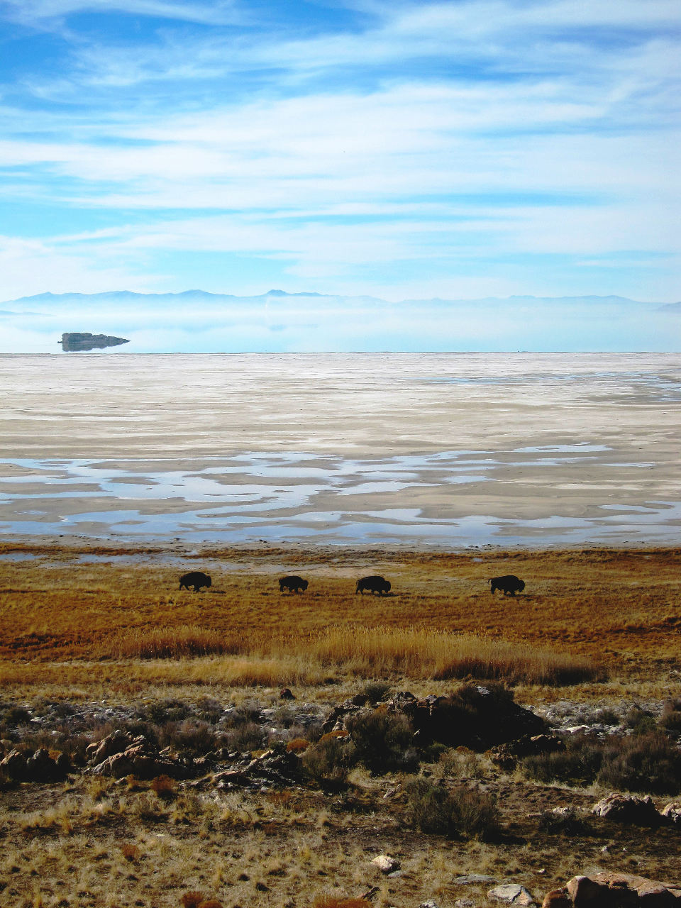 Antelope Island courtesy Woodruff