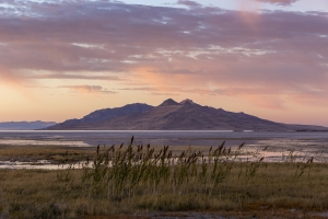 Timely, Generous and Just—Keeping Water in Great Salt Lake is the Right Thing to Do